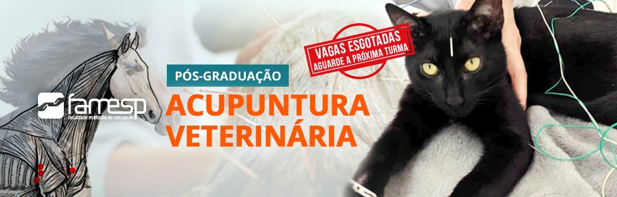 famesp-pos-graduacao-acupuntura-veterinaria-famesp