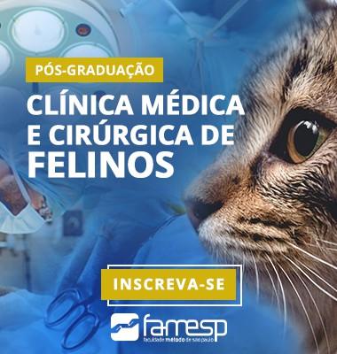 veterinaria-pos-graduacao-clinica-medica-cirurgica-felinos-famesp