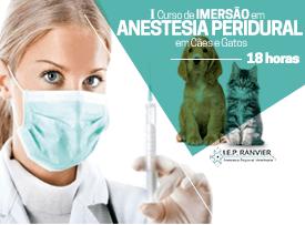 Curso prático de anestesia peridural em cães e gatos