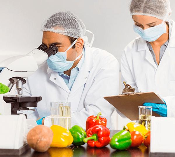 Vigilância Sanitária de Alimentos e Gestão de Pessoas
