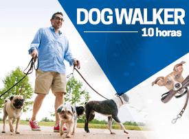 Dog-Walker-curso
