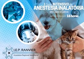curso-anestesia-inalatoria