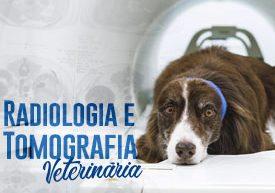 pos-graduacao-radiologia-e-tomografia-veterinaria-famesp