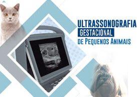 curso-ultrassonografia-gestacional-pequenos-animais-famesp