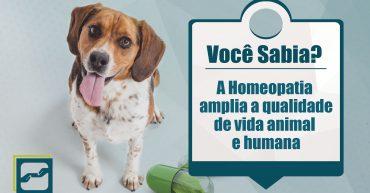 homeopatia_qualidade_vida