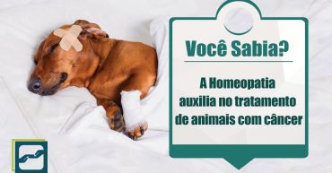 homeopatia_tratamento_cancer
