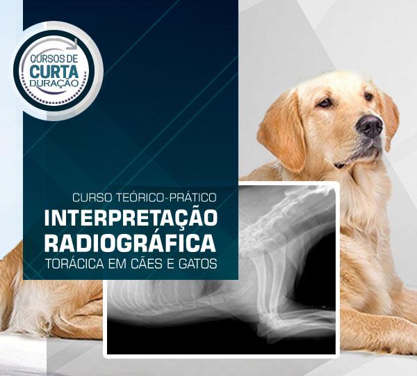 interpretacao_radiografica_caes_gatos-famesp