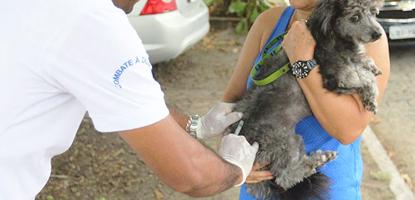 saude publica famesp curso tecnico de veterinaria