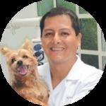 pos-odontologia-veterinaria-leon-roman-famesp