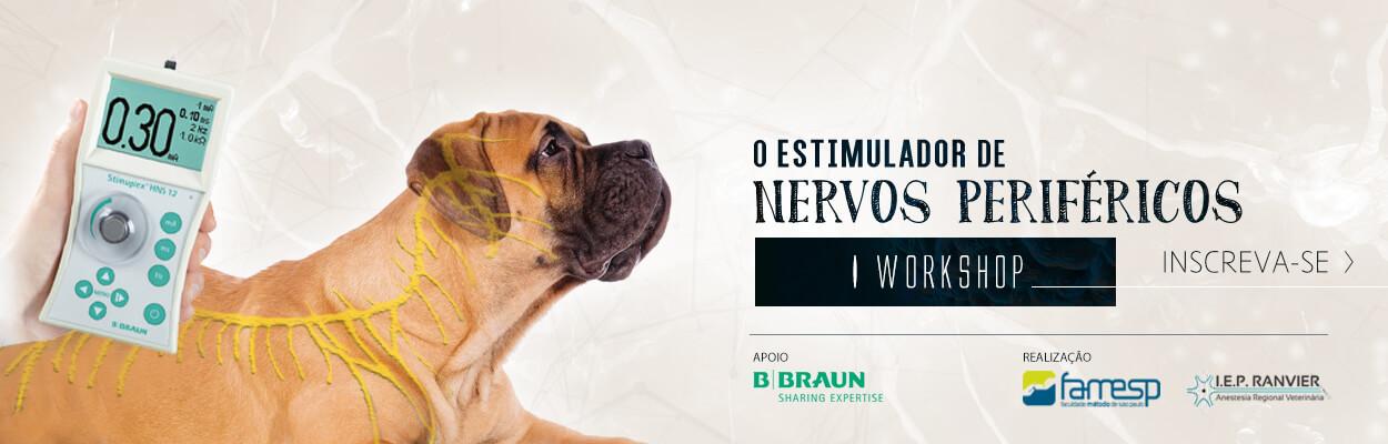 workshop estimulador nervos perifericos famesp