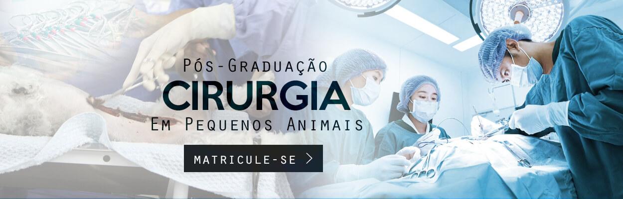famesp-pos-graduacao-cirurgia-pequenos-animais-famesp