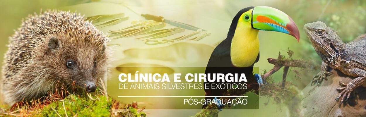 pos-graduacao-clinica-cirurgia-animais-silvestres-exoticos-famesp-famesp
