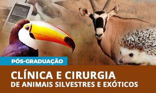 pos-graduacao-veterinaria-clinica-cirurgia-animais-silvestres-exoticos-famesp