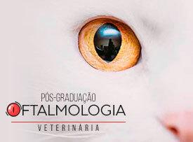 posgraduacao-oftalmologia-veterinaria-famesp
