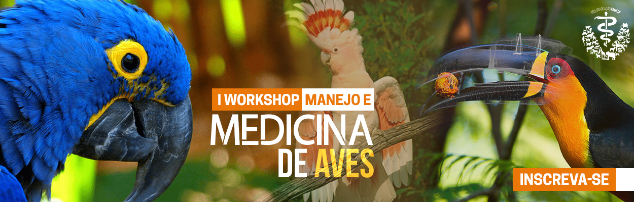 workshop-manejo-medicina-aves-famesp