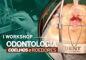 curso-odontologia-coelhos-roedores-fecchio-rabello-famesp