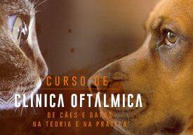 curso-veterinaria-clinica-oftalmologia-famesp
