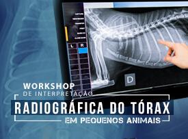 workshop-famesp-interpretacao-radiografica-torax-pequenos-animais-famesp