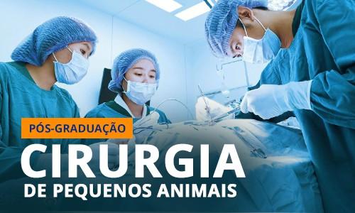 famesp-pos-graduacao-cirurgia-pequenos-animais