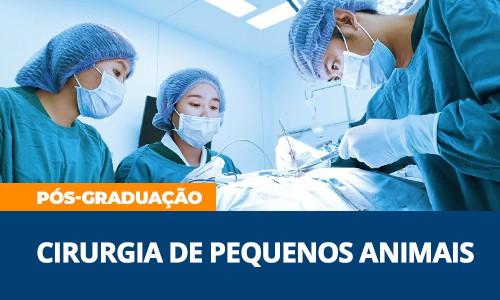 renato-dalcin-pos-graduacao-cirurgia-pequenos-animais-famesp-veterinaria