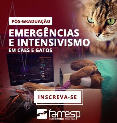 pos-graduacao-emergencias-intensivismo-caes-gatos-famesp-veterinaria