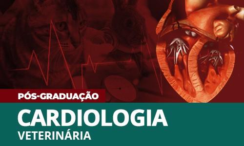 famesp-caio-nogueira-lilian-petrus-elaine-soares-pos-graduacao-cardiologia-veterinaria