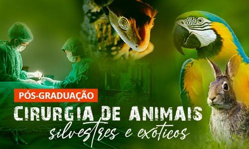famesp-pos-veterinaria-cirurgia-animais-silvestres-exoticos