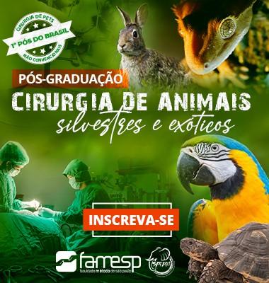 veterinaria-pos-cirurgia-animais-silvestres-exoticos-famesp-mantovani-fecchio