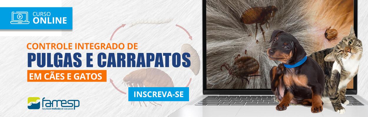 curso-livre-controle-integrado-pulgas-carrapatos-caes-gatos-famesp