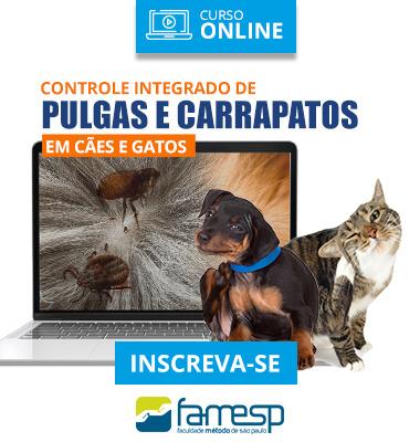 veterinaria-curso-livre-controle-integrado-pulgas-carrapatos-caes-gatos-famesp